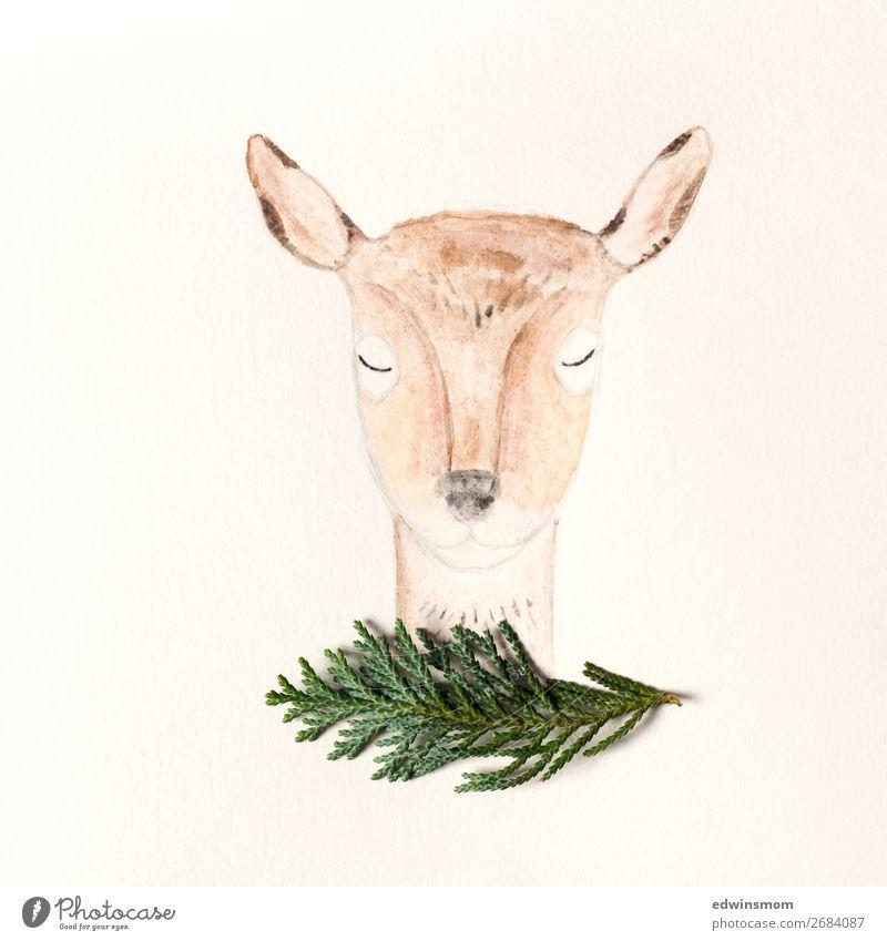 Nature Green Animal Calm Winter Autumn Warmth Natural Orange Brown Decoration Wild Wild animal Stand Creativity Bushes