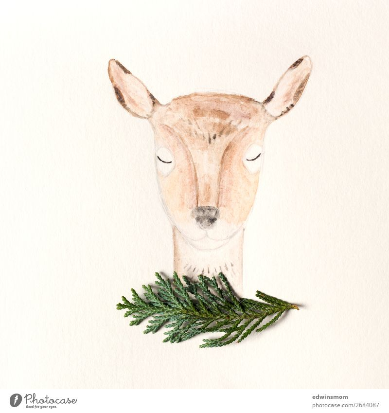 Oh deer Nature Autumn Winter Bushes Animal Wild animal Roe deer 1 Paper Decoration Breathe Sleep Stand Friendliness Near Natural Cute Warmth Soft Brown Green