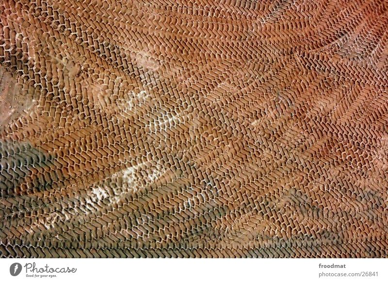Work and employment Stone Sand Brown Background picture Transport Earth Action Floor covering Wing Tracks Truck Agriculture Diagonal Furrow Gravel