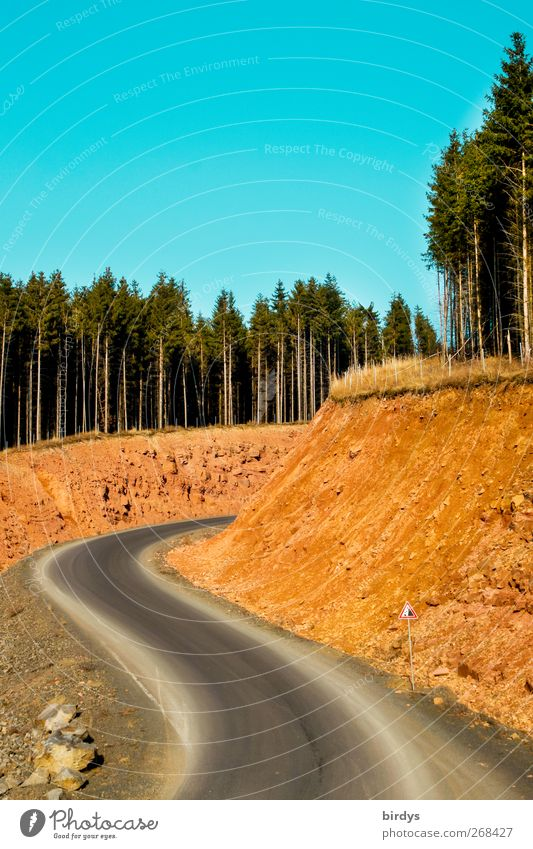 Sky Nature Blue Green Summer Colour Forest Yellow Street Autumn Spring Lanes & trails Earth Rock Illuminate Perspective