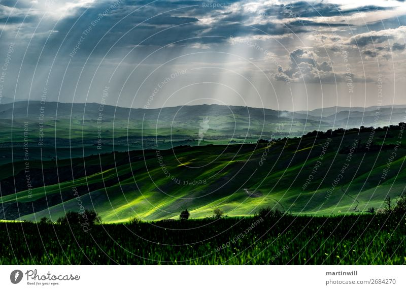 Rain in Tuscany Vacation & Travel Nature Landscape Drops of water Clouds Sunlight Spring Tree Meadow Field Hill Loneliness Lanes & trails Patch of light