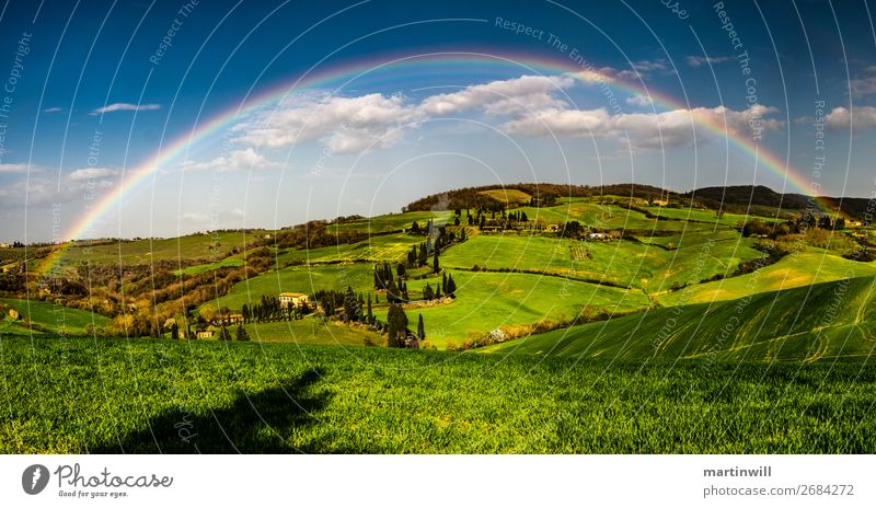 Rainbow over Tuscany Vacation & Travel Trip Nature Landscape Clouds Beautiful weather Stone pine Meadow Hill Italy Colour photo Exterior shot Deserted Day
