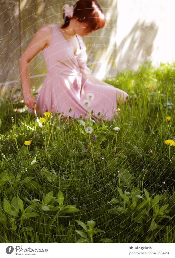 Human being Nature Youth (Young adults) Green Beautiful Calm Adults Meadow Feminine Spring Grass Garden Fashion Pink Sit Young woman