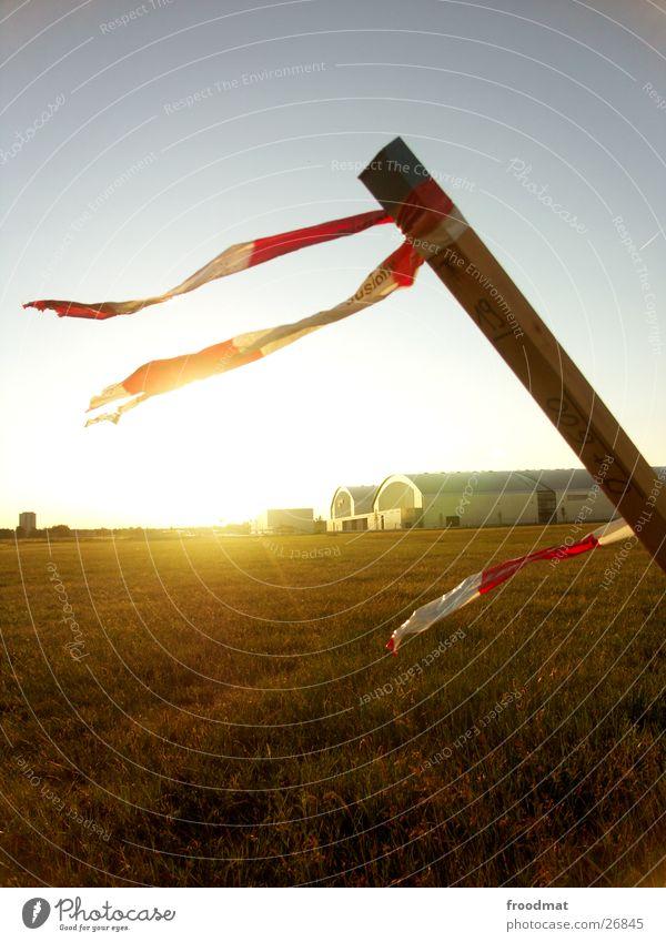 Sky Meadow Field Wind Barrier Karlsruhe Exhibition hall