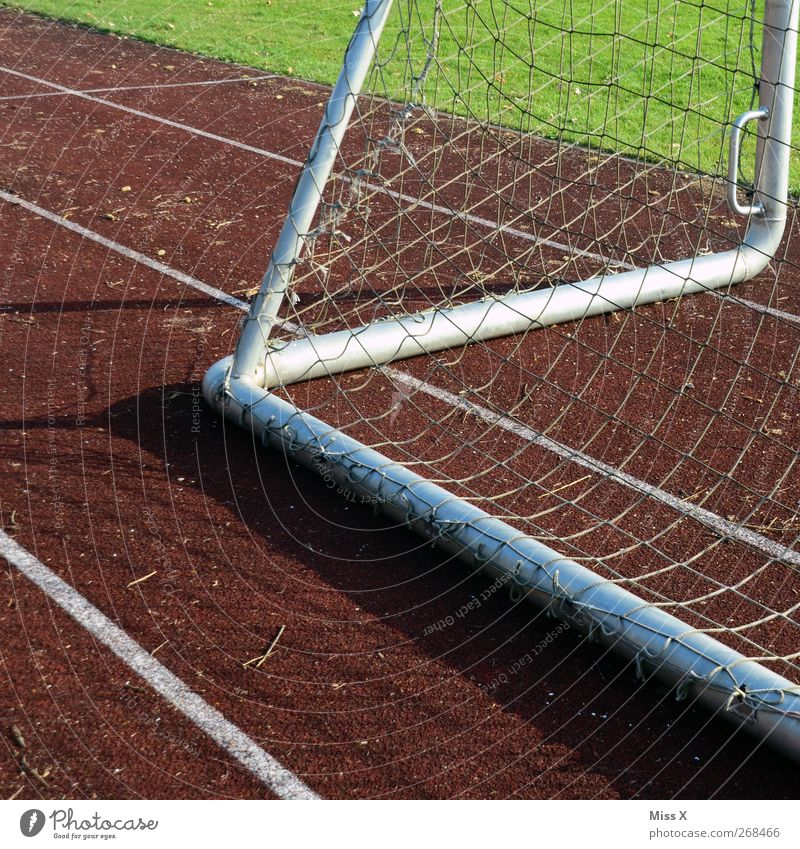 Bitch Zacke Leisure and hobbies Playing Sports Soccer Sporting Complex Football pitch Stadium Racecourse Grass Goal Net Colour photo Exterior shot Abstract