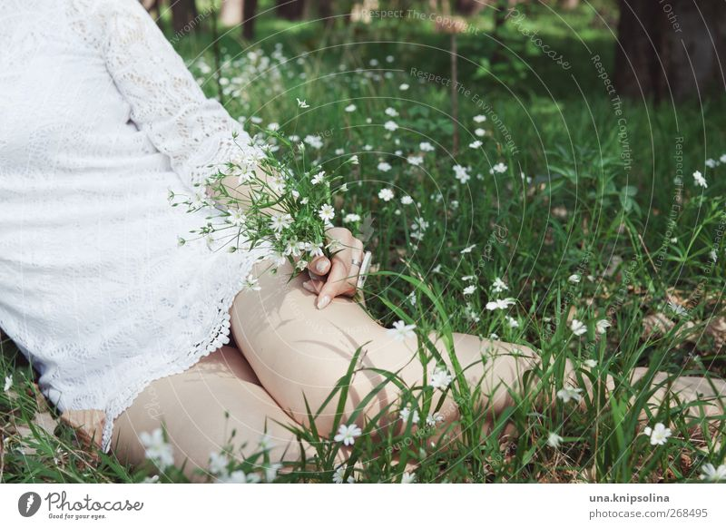 Human being Woman Nature Youth (Young adults) Hand White Green Beautiful Flower Adults Meadow Feminine Spring Grass Legs Fashion