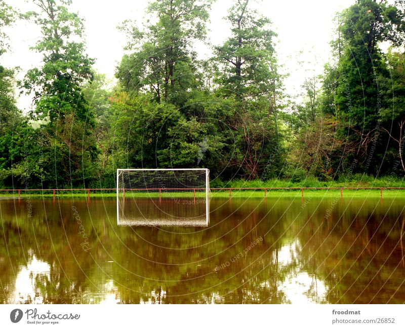 the game is probably flooded Reflection Tree Calm Flood Sports Soccer Gate Deluge Water Handrail Smoothness Transparent Rhine