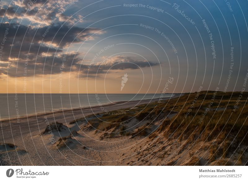 View of the beach in Denmark Vacation & Travel Freedom Summer vacation Beach Environment Nature Landscape Water Sky Sunrise Sunset Beautiful weather Coast Ocean