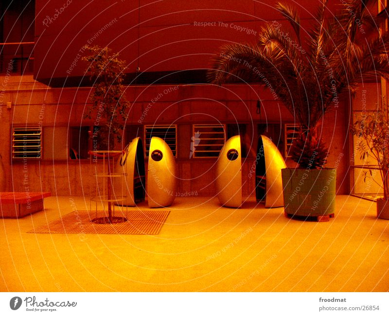 Film capsules in orange and with palm tree Potsdam Palm tree Futurism Obscure HFF Academy for Film and Television Egg Orange filtered strange film consumption