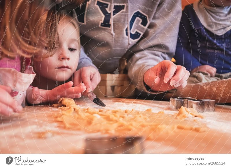 Children bake Christmas cookies Cookie cut out cookies cookie dough Joy Baking Living or residing cake Human being Young woman Youth (Young adults) Infancy 4