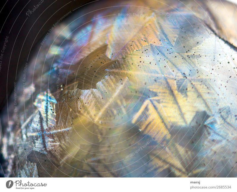 The strange world Soap bubble Ice crystal Crystal structure Glittering Illuminate Esthetic Exceptional Dark Success Fantastic Gigantic Uniqueness Near Round