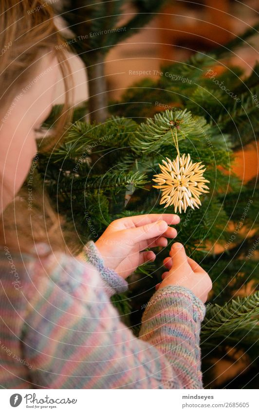 Decorate your Christmas tree Living or residing Living room Christmas & Advent Girl 1 Human being 3 - 8 years Child Infancy Illuminate Dream Safety (feeling of)