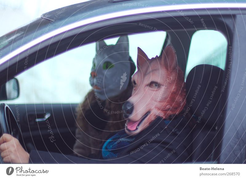 200 ... No risk, no fun! Masculine Feminine Head Eyes Ear Nose Mouth Human being Car Coat Fur coat Cat Animal face Wolf Driving Happy Blue Brown White Emotions
