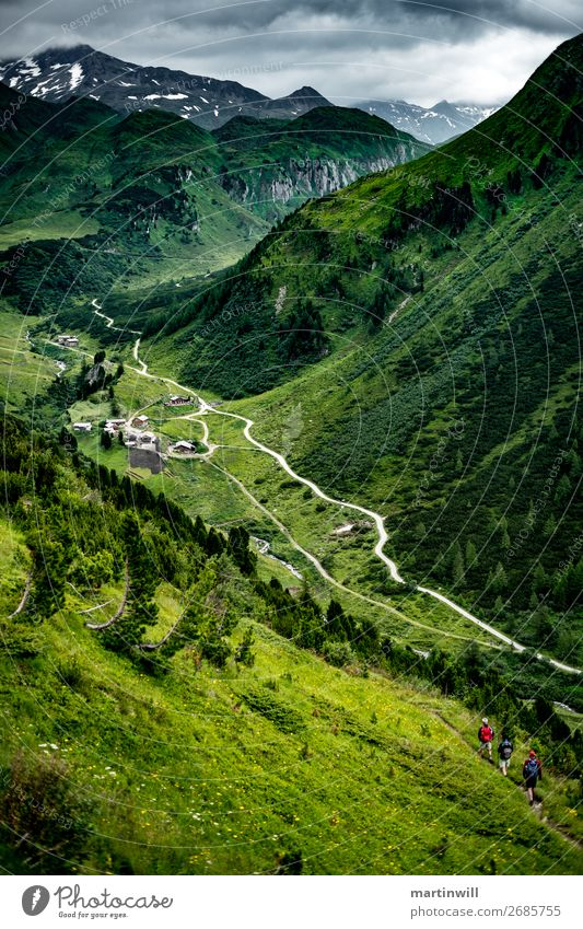 Descent to Pustertal / South Tyrol Mountain Hiking Climbing Mountaineering Nature Landscape Meadow Rock Alps Peak Valley Footpath Tall Green Lanes & trails