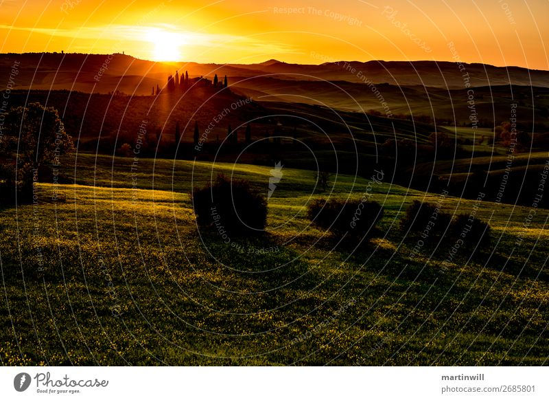 Villa before sunset in Tuscany Val D'Orcia Vacation & Travel Tourism Summer vacation Sun Nature Landscape Beautiful weather Meadow Hill Italy Warmth Horizon