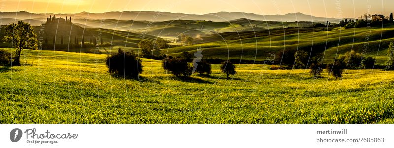 Panorama in Val D'Orcia Tuscany at sunrise Vacation & Travel Tourism Sun Villa Landscape Sunrise Sunset Spring Beautiful weather Meadow Field Hill Italy Green