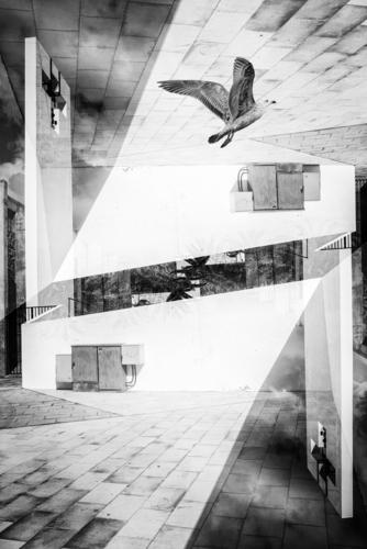 GOTTESHAUS Deserted Church Places Animal Bird 1 Concrete Sign Crucifix Esthetic Sharp-edged Modern Town Belief Paving stone Double exposure House of worship