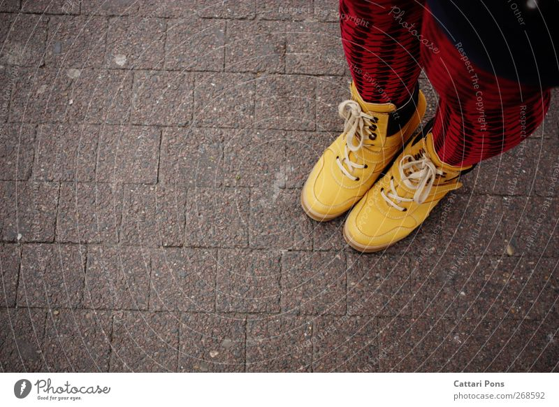 one by one Style Clothing Tights Leather Footwear Boots Stand Hip & trendy Uniqueness Modern Crazy Feminine Yellow Red Esthetic Independence Individualist