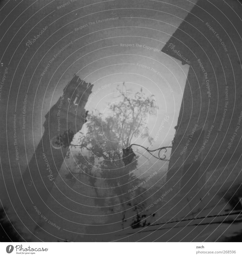 Old City Plant Tree House (Residential Structure) Black Dark Church Transience Tower Italy Manmade structures Lantern Analog Double exposure Tourist Attraction