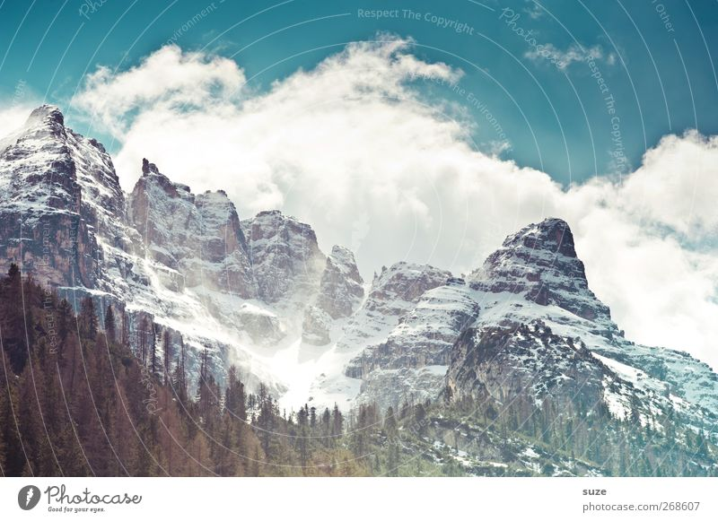 Sky Nature Blue Vacation & Travel Clouds Forest Environment Landscape Mountain Spring Rock Climate Exceptional Large Elements Might
