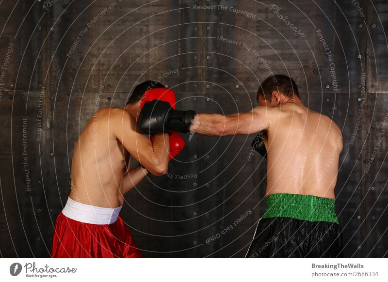 Two boxer men boxing in gloves Sports Martial arts Sportsperson Success Loser Sporting event Masculine Man Adults 2 Human being Muscular Strong Red Black Power