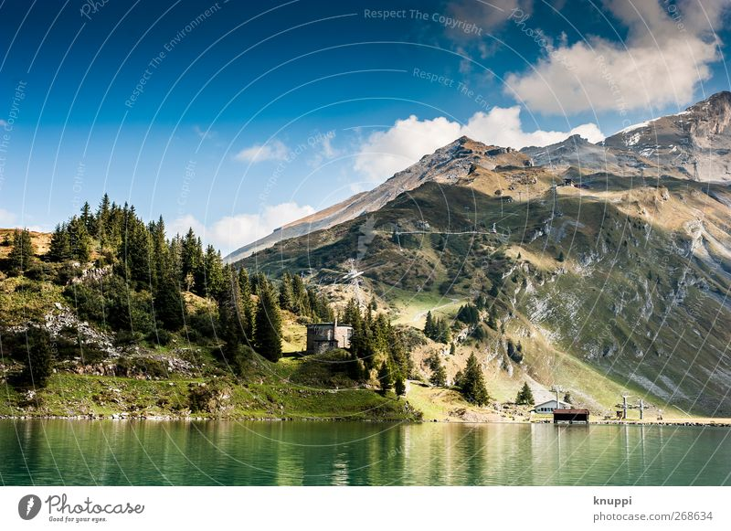 2000 m.a.s.l. Environment Nature Landscape Elements Sky Clouds Sun Sunlight Summer Weather Beautiful weather Tree Forest Rock Alps Mountain Peak Gigantic Wild