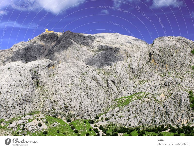 Puig Major Vacation & Travel Mountain Hiking Nature Landscape Sky Clouds Plant Tree Grass Meadow Rock Majorca Warmth Blue Gray Green Tall Large Colour photo