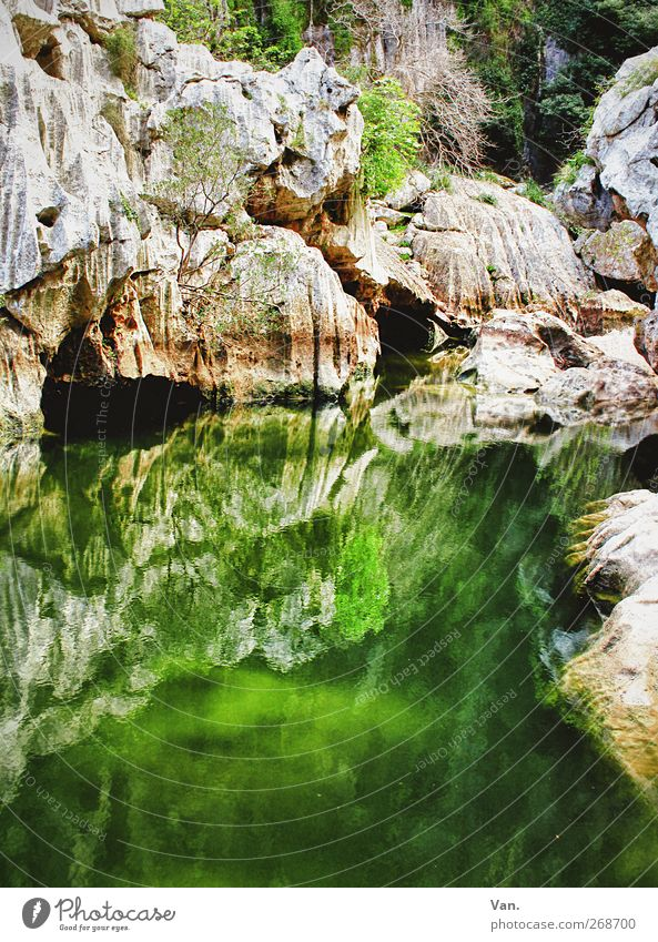 Nature Water Green Tree Plant Mountain Stone Rock Wet Illuminate Moss Pond Canyon Algae Cave Torrent de Pareis