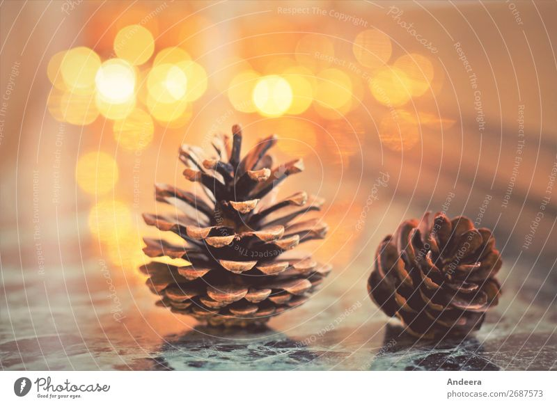 Christmas decoration with fir cones and lights on a smooth surface with Bokeh Winter Flat (apartment) Christmas & Advent Fir cone Decoration wood Illuminate