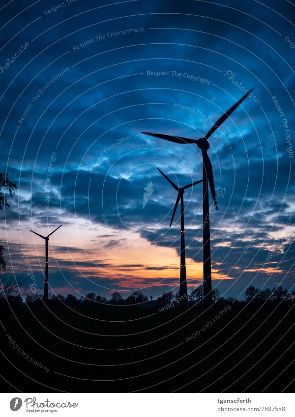 Energy Economy Energy industry Technology High-tech Renewable energy Wind energy plant Industry Landscape Sky Clouds Sunrise Sunset Industrial plant Tower