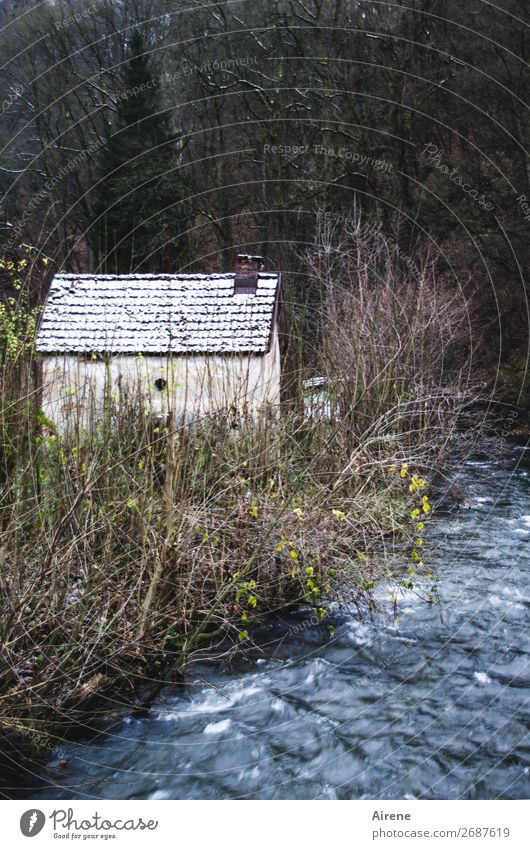 retreat Winter Snow Forest Brook Edge of the forest Village Outskirts Deserted House (Residential Structure) Hut Dark Simple Creepy Small Blue Gray Black