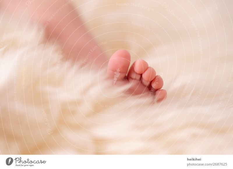 Newborn Skin Harmonious Contentment Relaxation Calm Flat (apartment) Human being Baby Legs Feet 1 0 - 12 months Lie Sleep Healthy Happy Cuddly Small Cute