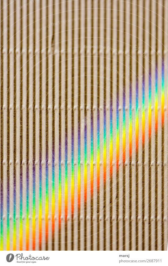 HAPPY BIRTHDAY PHOTOCASE AT THE BIRTHDAY'S 19th BIRTHDAY   Plenty of room for colourful creativity and also straight Corrugated board Rainbow Prismatic colors