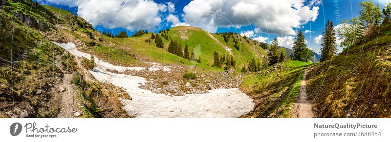 Panorama - Footpath - Oberjoch - Allgaeu - Bavaria - Germany Vacation & Travel Summer Environment Nature Meadow Forest Alps Mountain Peak Canyon Diet Observe