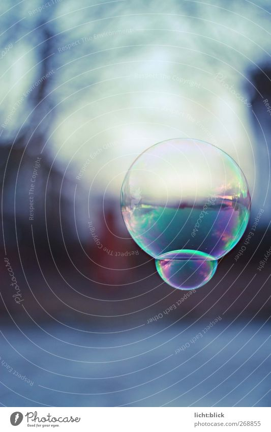 The world in a bubble Horizon Lake Thin Glittering Infinity Cold Round Blue Soap bubble Fragile Hover Colour photo Exterior shot Detail Deserted Day Reflection