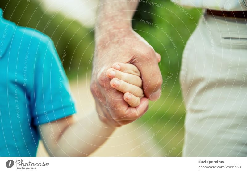 Child holding hand of senior man in the nature Human being Nature Man Old Hand Adults Life Love Family & Relations Boy (child) Small Together Authentic Trust