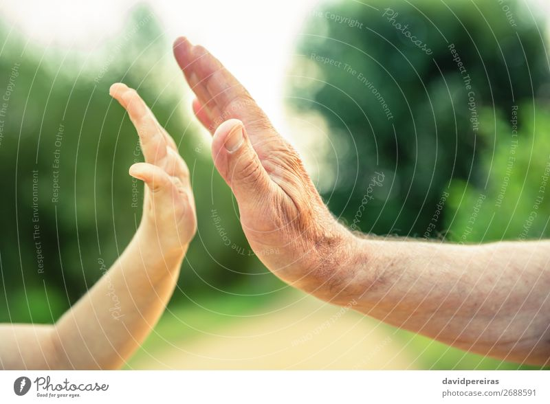 Child and senior man hands giving five in the nature Skin Life Retirement Human being Baby Boy (child) Man Adults Parents Father Grandfather Family & Relations
