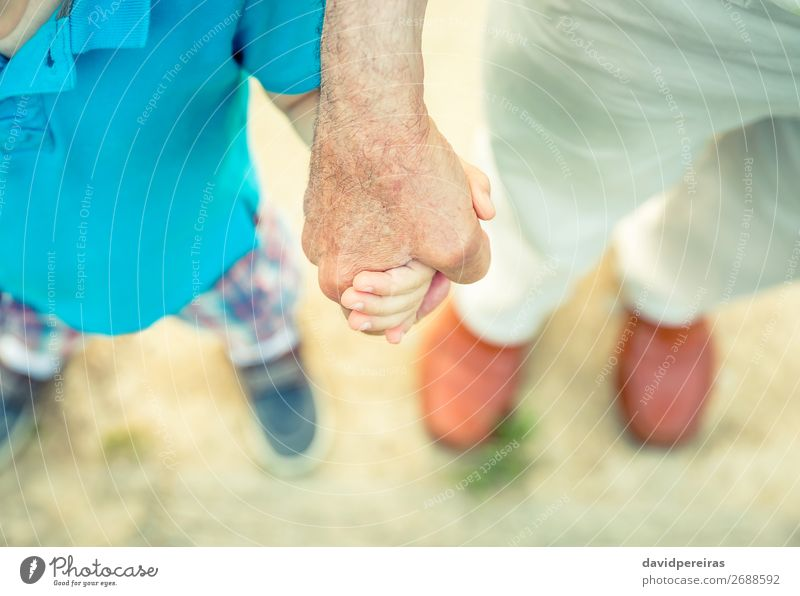 Child holding hand of senior man in the nature Human being Nature Man Old Hand Adults Life Love Lanes & trails Family & Relations Boy (child) Small Exceptional