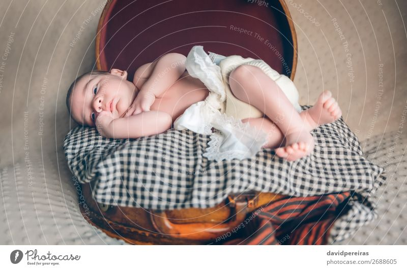 Newborn baby resting lying above of travel suitcase Joy Beautiful Body Skin Face Life Relaxation Vacation & Travel Child Human being Baby Boy (child) Infancy