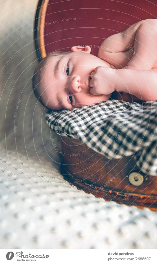 Newborn baby resting lying above of travel suitcase Child Human being Vacation & Travel Beautiful Relaxation Joy Face Life Love Boy (child) Small Body Retro