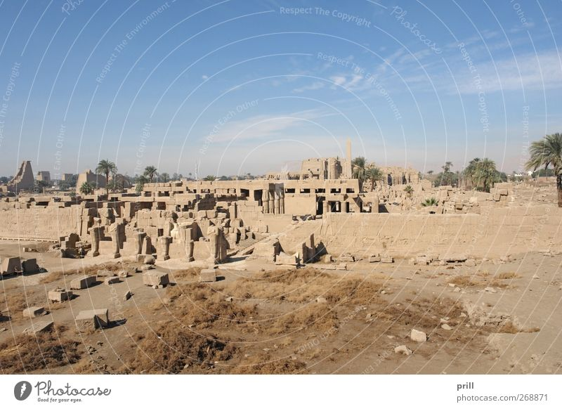 Precinct of Amun-Re in Egypt Tourism Decoration Culture Manmade structures Building Architecture Wall (barrier) Wall (building) Tourist Attraction Monument