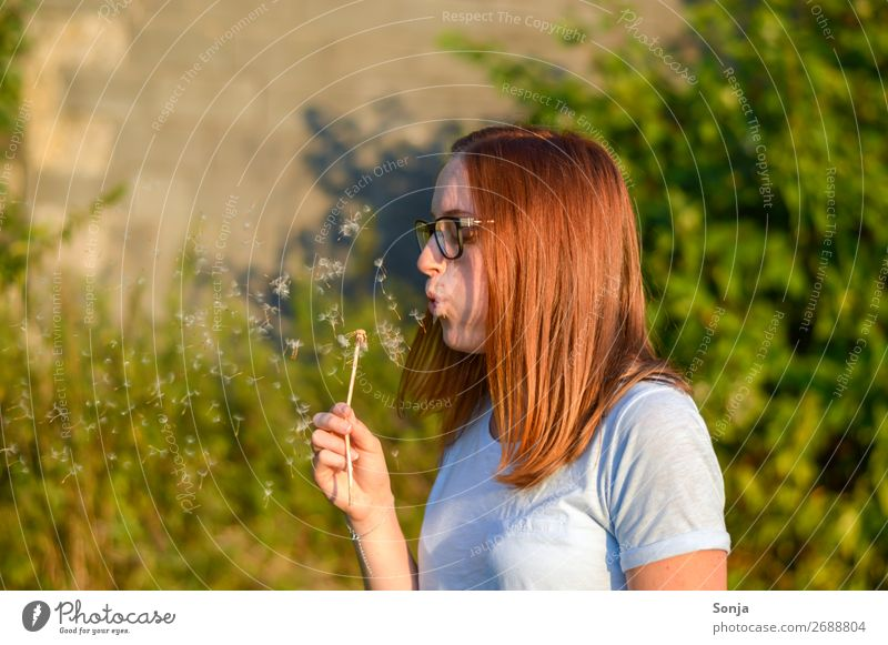 Young woman with a dandelion Lifestyle Summer Human being Feminine Youth (Young adults) 1 18 - 30 years Adults T-shirt Red-haired Long-haired Dandelion