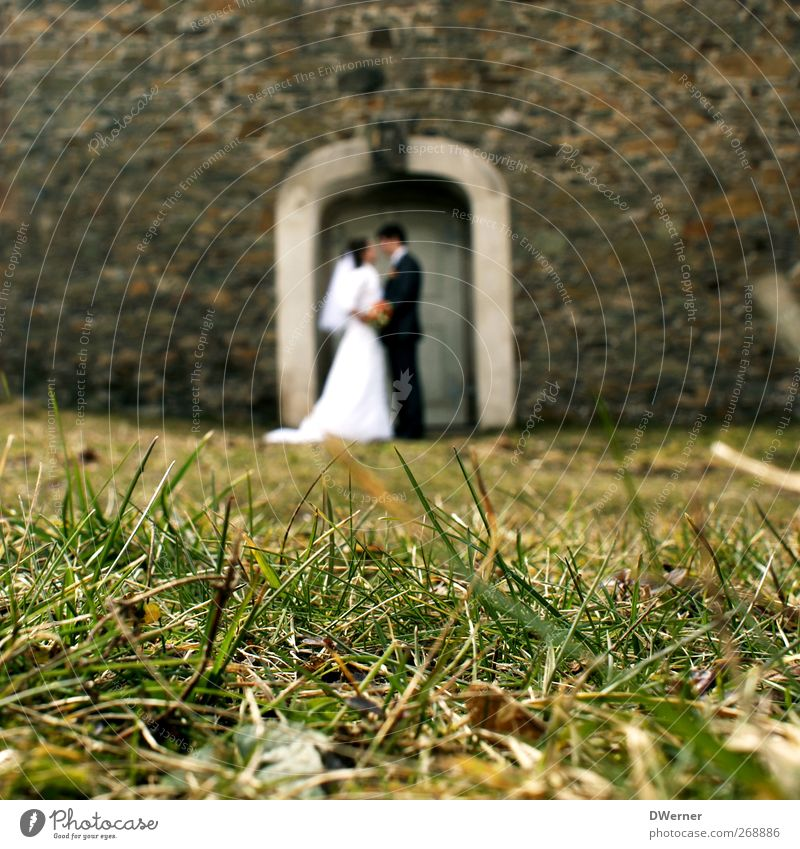 just married Elegant House (Residential Structure) Garden Feasts & Celebrations Wedding Human being Masculine Feminine Young woman Youth (Young adults)