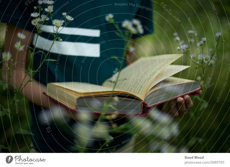 teenager is holding a book in his hands in nature Lifestyle Beautiful Relaxation Leisure and hobbies Reading Vacation & Travel Summer Hiking Garden School