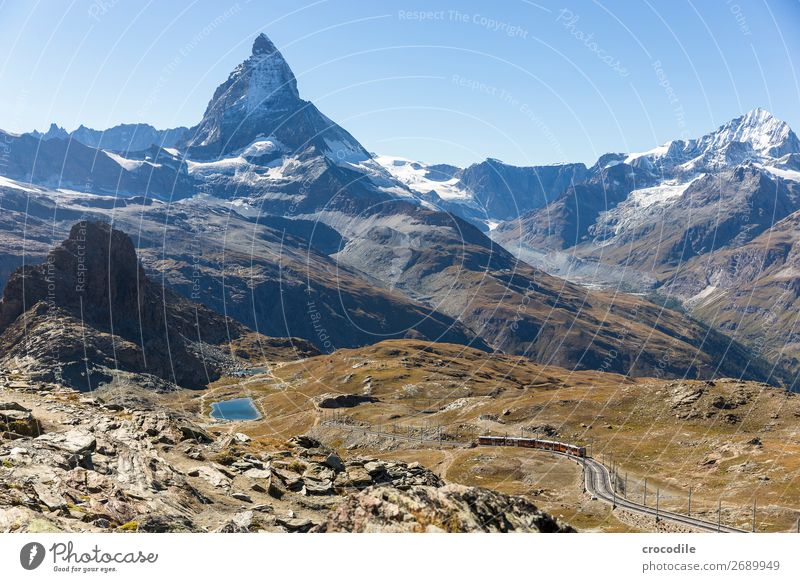#771 Switzerland Matterhorn Landmark Mountain Village Hiking Mountain bike trail Lanes & trails Colour photo soft light Peak Meadow Peaceful Snow Glacier Idyll