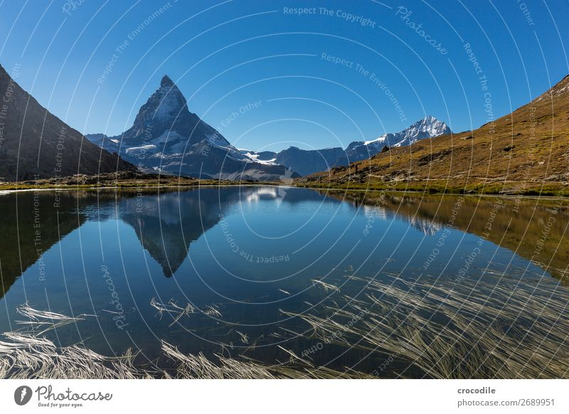 #772 Switzerland Matterhorn Landmark Mountain Village Hiking Mountain bike trail Lanes & trails Colour photo soft light Peak Meadow Peaceful Snow Glacier Idyll