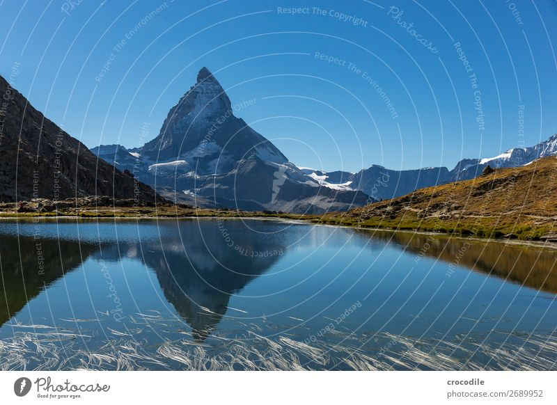 #773 Switzerland Matterhorn Landmark Mountain Village Hiking Mountain bike trail Lanes & trails Colour photo soft light Peak Meadow Peaceful Snow Glacier Idyll