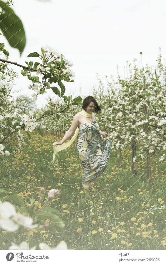 pollen Woman Adults Life 1 Human being Nature Plant Spring Beautiful weather Blossom Meadow Field Dress Blossoming Fragrance To enjoy Smiling Dream Growth