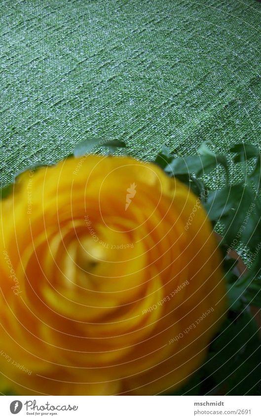 Flower Green Plant Yellow Orange Table Blanket