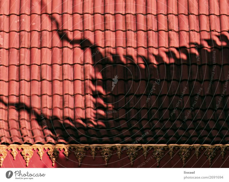 shadow on asian roof Decoration Art Capital city Building Architecture Facade Roof Monument Old Elegant Gold Pink Red Wat wat xieng thong Carving golden door